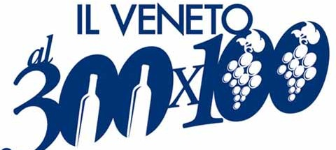 300x100-logo